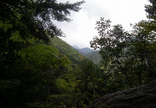 2009.4.25-29屋久島 3017