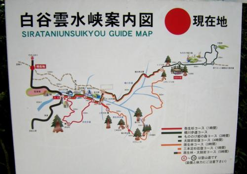 2009.4.25-29屋久島 3049