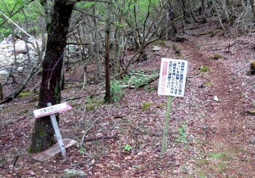 2009.5.4鹿納、お姫、五葉 114