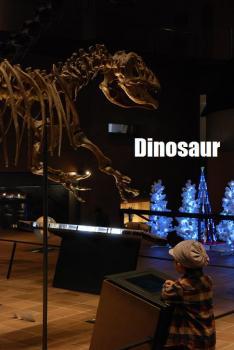 大きな恐竜だね
