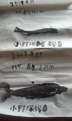 200808280836000.jpg