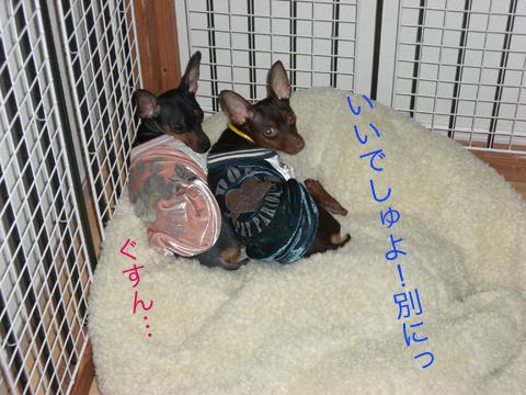 furimuki02.jpg