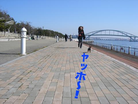maishima01.jpg