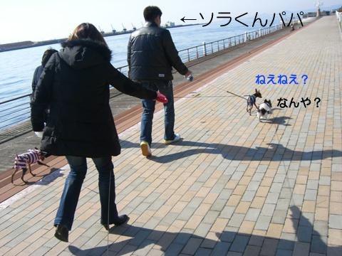 maishima02.jpg