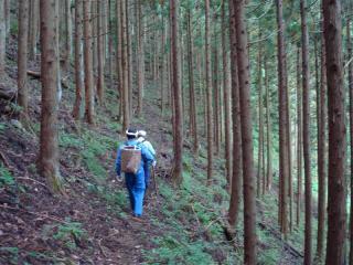 杉山を超える