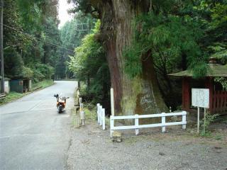 FJR1300と大杉