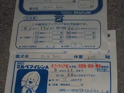 DSCF1146.jpg