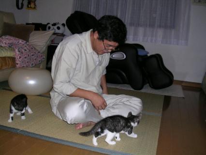 伊藤家の猫 022