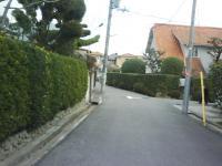J0010004_20100120112837.jpg