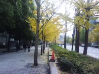 J0010007_20091208133353.jpg