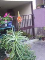J0010032_20091208134146.jpg