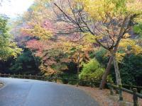 fubutu09-03-10.jpg