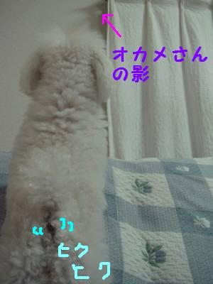 20070101 001