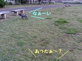 20080326174608.jpg