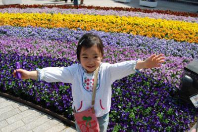 DSC_2205flower.jpg