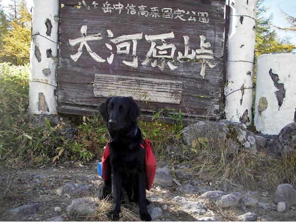 北八ケ岳トレック&キャンプ10