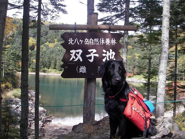 北八ケ岳トレック&キャンプ12