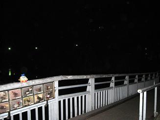 kittan ryuusei_inokashira 1 blog