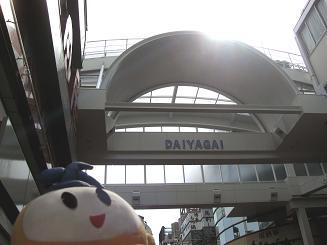 kittan daiyagai 3  blog