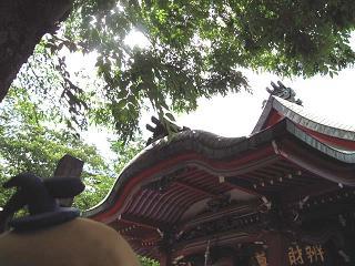 kittan midori4  blog