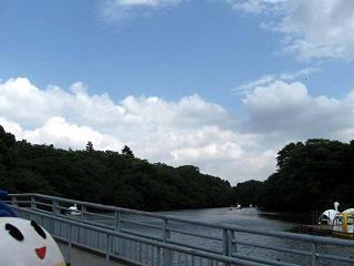 kittan midori5  blog