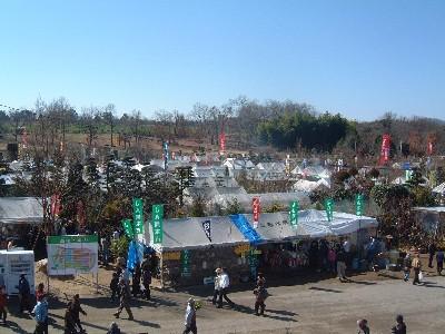 春の農協植木祭り