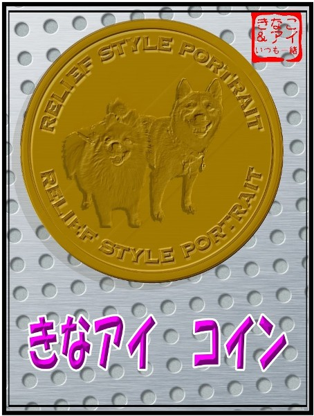 XXSきなアイ記念コイン