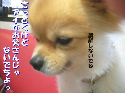 SA081002a_convert_20081003124847.jpg
