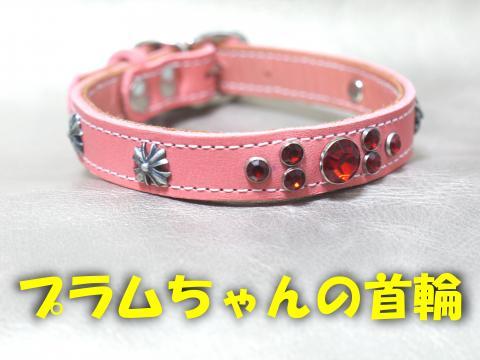 SPAkubiwa-b_convert_20081124145502.jpg