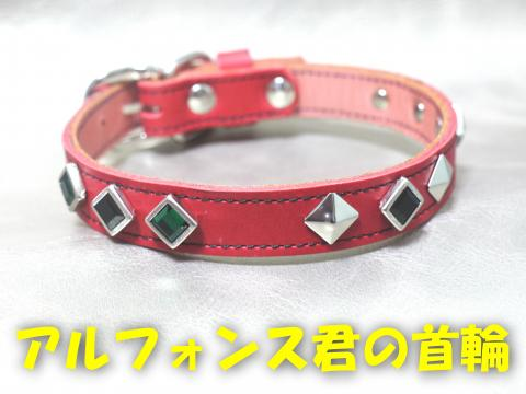 SPAkubiwa-c_convert_20081124151522.jpg