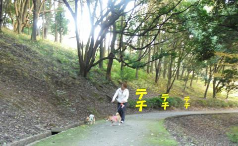Sasukamura-d_convert_20081202134832.jpg