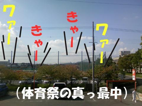 Sgakou_convert_20081010154005.jpg