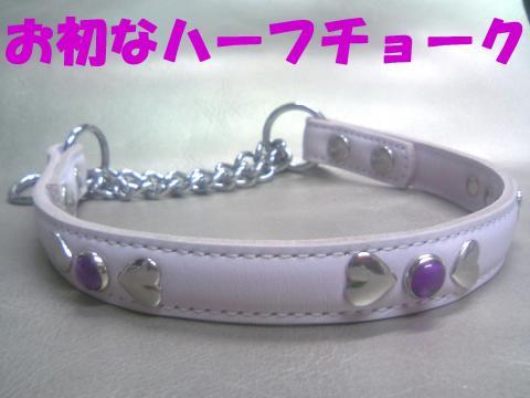 Sh-cyoukuA_convert_20080924131845.jpg