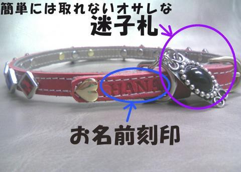 Skubiwa-hanakoB_convert_20080908233001.jpg