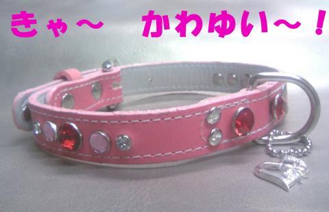 Skubiwa-nutsC_convert_20080910190830.jpg
