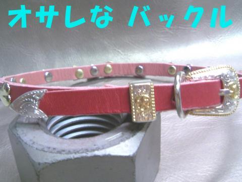 Skyou-kubiwaA_convert_20080924120016.jpg