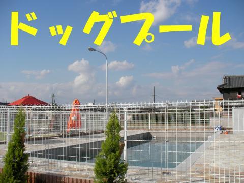 Spo-ru_convert_20081027232342.jpg