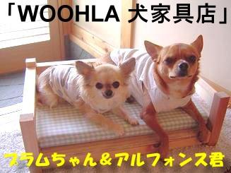 Swoohla-sannchi.jpg