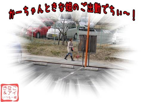 XSKs090204Bc.jpg