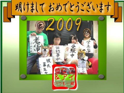 XSZC2009ganntann_20081231152818.jpg