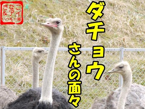 XSdacyou-b.jpg
