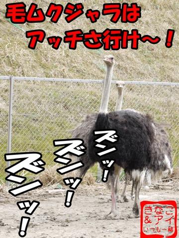 XSdacyou-c.jpg