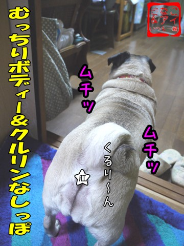 XShanako-B_20090101195421.jpg