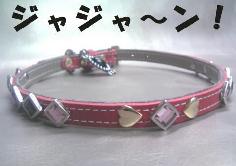 kubiwa-hanakoA_convert_20080908224843.jpg