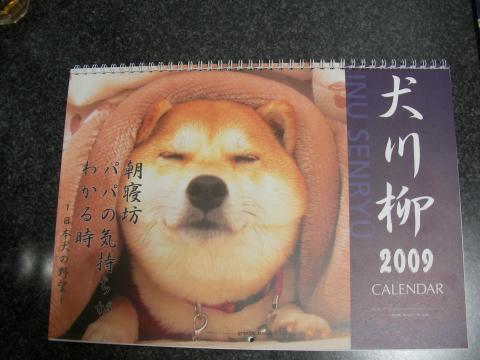 shibakarenda_convert_20081106000123.jpg