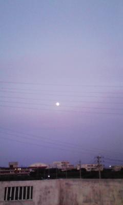 画像marasonn 014
