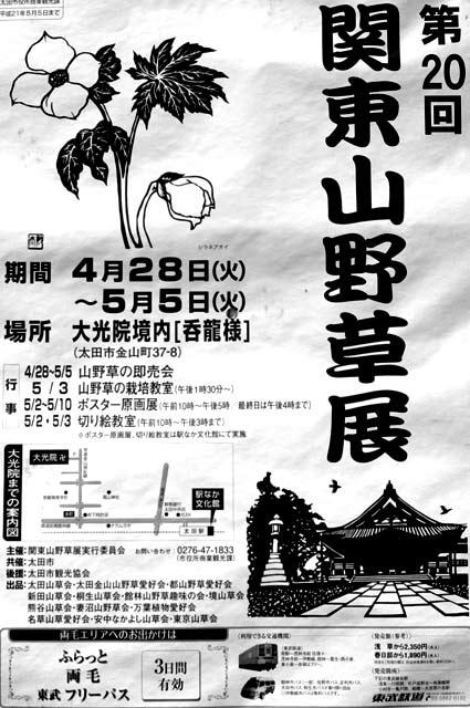 090503野草01