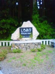 シロアリの墓