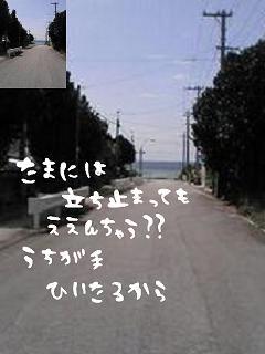 img_1455937_35501425_16.jpg