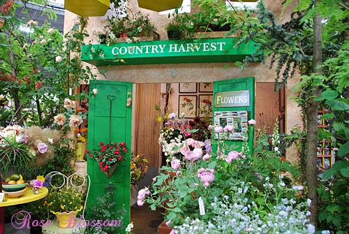 countryharvest.jpg